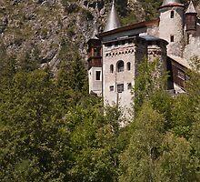"Castle - ""Schloss Fernsteinsee"" by imagic"