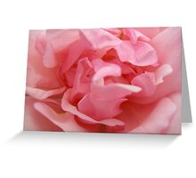 Rose 20 Greeting Card