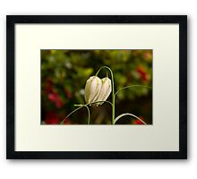 Flower 67 Framed Print