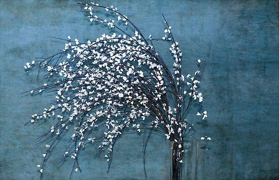 Le jour avant le lendemain by Anne Staub