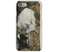 White Kid Goat iPhone Case/Skin