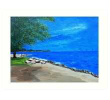 Lake Lamoure Art Print