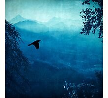 Blue Mountain Haze Photographic Print
