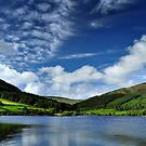 Afternoon at the Baldwin Reservoir by Sammie Caine