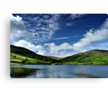 Afternoon at the Baldwin Reservoir Canvas Print