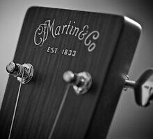 Martin D15 by Niall Allen