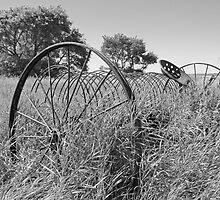 Dump Rake in the Grass by Gary Horner