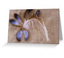 Feathering. Greeting Card