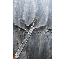 Juliette's Dagger Photographic Print