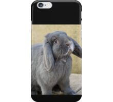 Black Rabbit iPhone Case/Skin