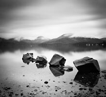 Scotland: Lomond Rocks by Nina Papiorek