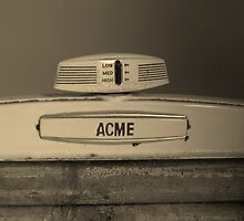 Acme by Cheryl Carpenter