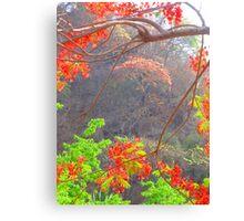 The bright colours of the plants and blossoms in the tropical zone - Los colores de las plantas y flores en la zona tropical Canvas Print