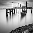 Venice: Canal Grande by Nina Papiorek