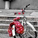 Una bicicletta a Riva del garda by Martina Fagan