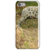Stone Wild Cat on a Lawn iPhone Case/Skin