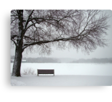 Quiet and Still Canvas Print