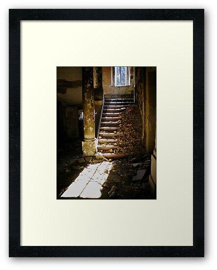 Ruins by Mojca Savicki