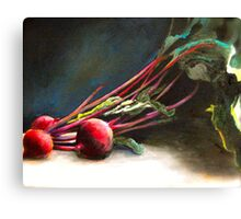 Beta Vulgaris Canvas Print