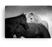 The Three Of Us Canvas Print