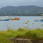 Fishing boats at Milford by Fara