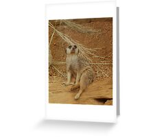 Who Me ??? Greeting Card