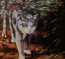 Pooty's Jungle by Karen Ilari