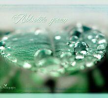 Absolute green by Olga