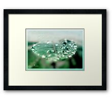 Absolute green Framed Print