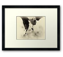 The Claws Framed Print
