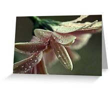 """Dancing in the Rain...."" Greeting Card"