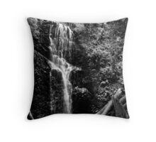 Water Fall - Big Basin, CA Throw Pillow