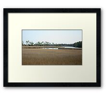 THE MARSH ON BURNT MILL CREEK Framed Print