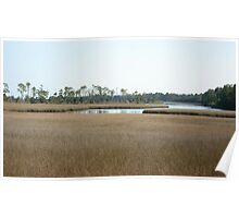 THE MARSH ON BURNT MILL CREEK Poster