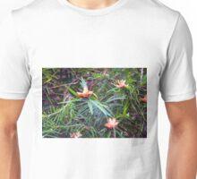 Longwood Gardens - Spring Series 80 Unisex T-Shirt