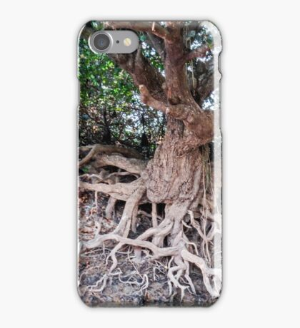 Clinging to the edge iPhone Case/Skin