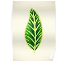 Tropical Leaf I Poster