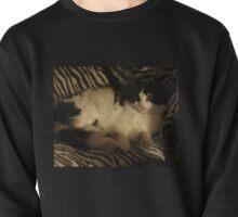 COSY CAT Pullover