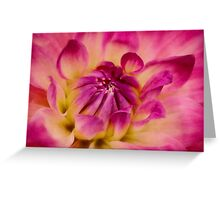 Painted dahlia Greeting Card