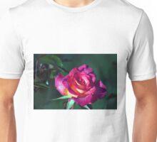 Longwood Gardens - Spring Series 84 Unisex T-Shirt