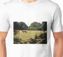 Longwood Gardens - Spring Series 86 Unisex T-Shirt