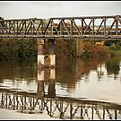 The Wanganui River Rail Bridge by Sea-Change