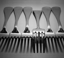 Fork Ettiquette by shuttersuze75