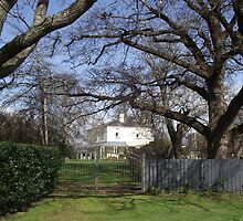looking at the Old Rectory, Deloraine  by gaylene