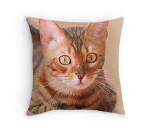 Bengal Cat Painting Throw Pillow