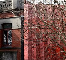 Old and the New by Mick Kupresanin