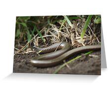 Slowworm Greeting Card