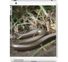 Slowworm iPad Case/Skin