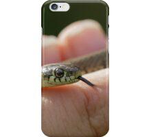 Grass Snake iPhone Case/Skin