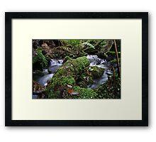 Westmorland Cascades, Tasmania Framed Print